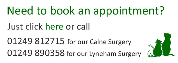Book An Vet Appointment Online In Calne or Lyneham Today